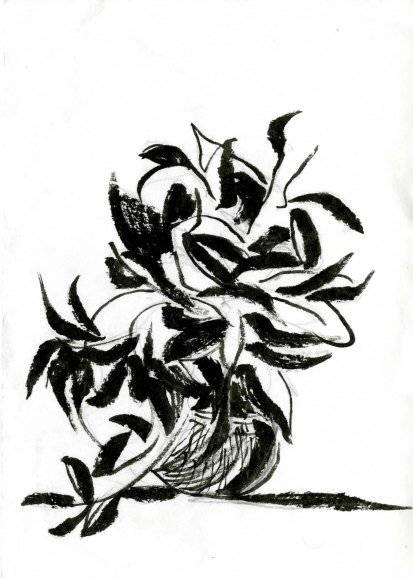 Arrangement, Pen and Ink, 2013